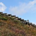 写真: 天空への階段