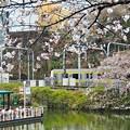 Photos: 春色沿線13