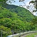 四季島新緑を行く1