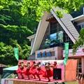 写真: 高尾山フラガール1