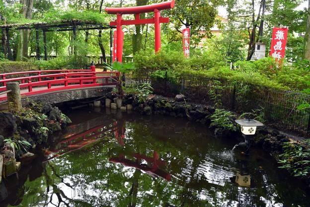 Photos: 世田谷八幡宮(4)