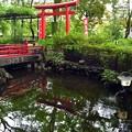 写真: 世田谷八幡宮(4)