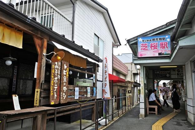 Photos: 芝桜駅