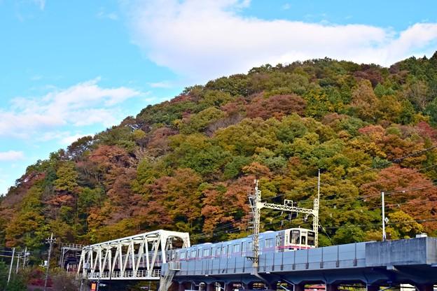 Photos: 秋色沿線(15)