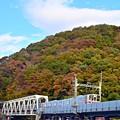写真: 秋色沿線(15)