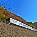写真: 西陽に輝く紅葉電車