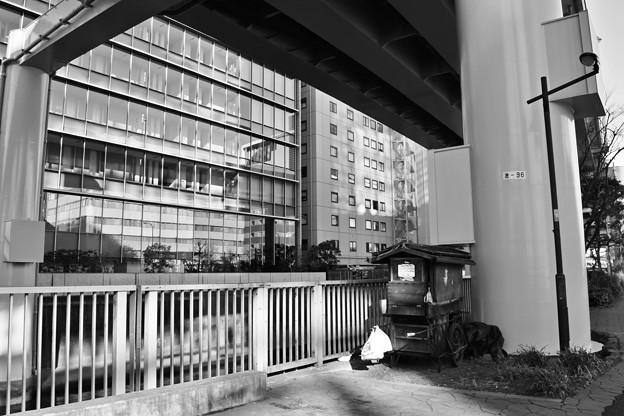 Photos: 高架下の昭和