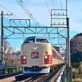 Photos: 国鉄色富士山号