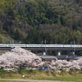 Photos: 189系M52編成「山梨富士」@藤野~上野原