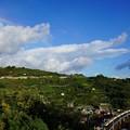 虹と列車が交わった奇跡の瞬間@早川~根府川