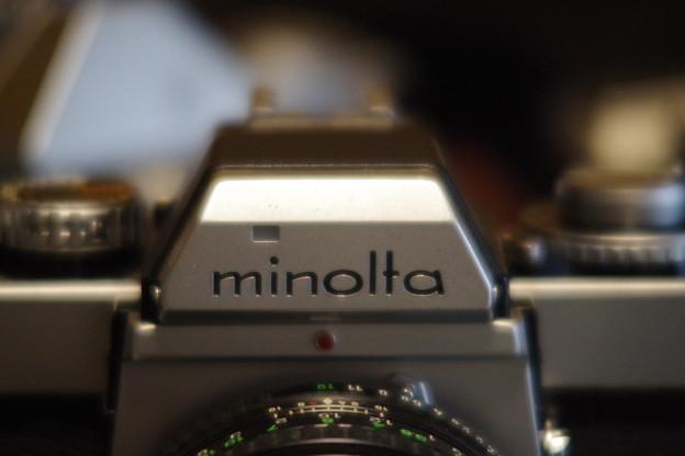 マクロ最短撮影距離付近絞り開放での作例