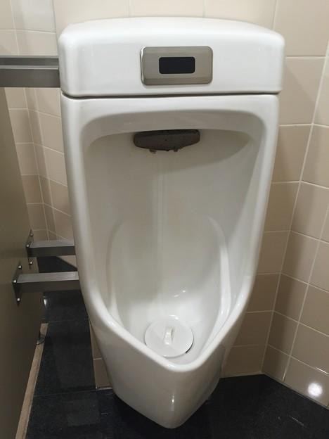 ホームプラザナフコ・広島ベイサイド店のトイレの小便器