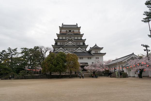 【福山城の桜】3
