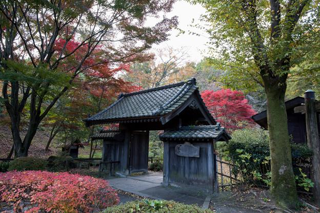 薬師池公園【旧荻野家の景色】1