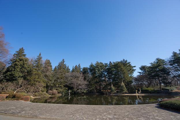 神代植物公園【カワセミが居るはずの池】