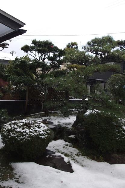12月12日の雪