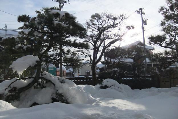 庭は雪の山
