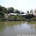 IMG_3303平安神宮・東神苑