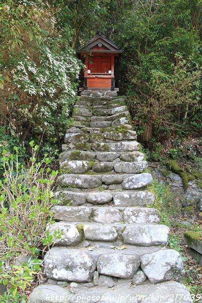 IMG_3656大野寺