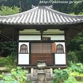 Photos: IMG_5859阿弥陀堂