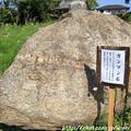 写真: IMG_6689般若寺・橄欖石