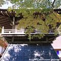 写真: IMG_7221永源寺・鐘楼といろは紅葉