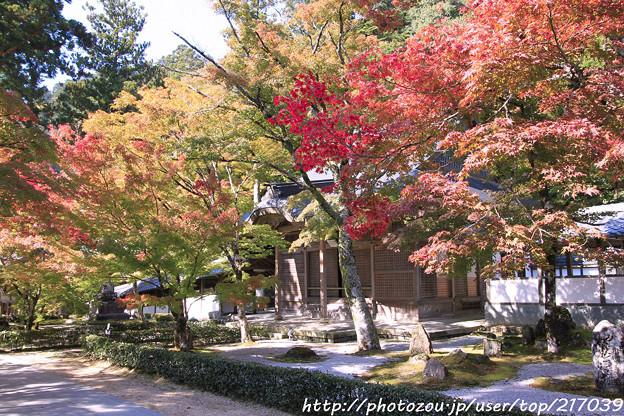 IMG_7258永源寺・いろは紅葉と開山堂
