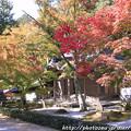写真: IMG_7258永源寺・いろは紅葉と開山堂