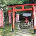写真: IMG_7557西明寺・稲荷大明神