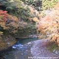 写真: IMG_7606高雄