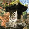 写真: IMG_7614西明寺・灯籠