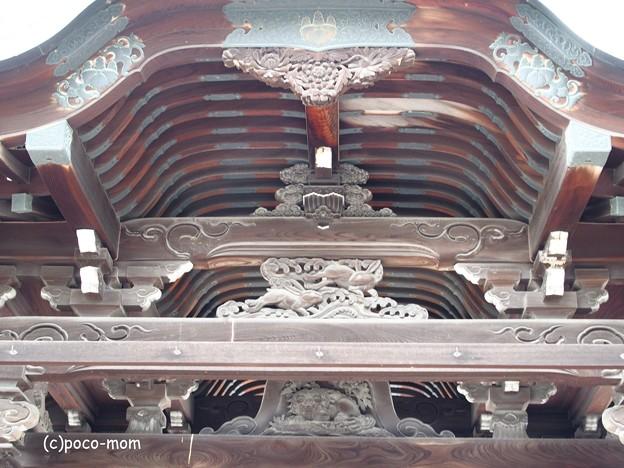 写真: 高台寺 勅使門 P5010564