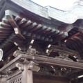 高台寺 勅使門 P5010575