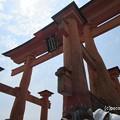 写真: 厳島神社 IMG_0970