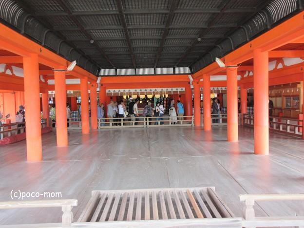 写真: 厳島神社 IMG_1014