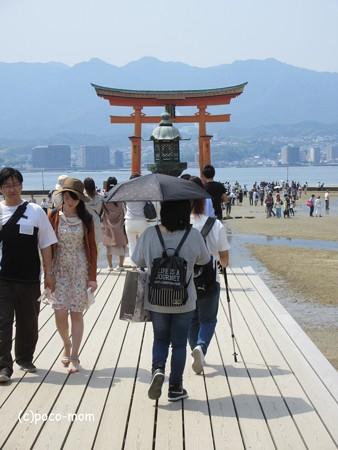 厳島神社 IMG_1019