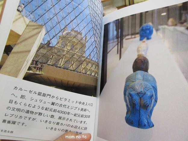 写真: ルーヴル美術館の青カバ IMG_12751
