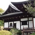 Photos: 広隆寺 P9230980