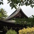 Photos: 広隆寺 P9230990