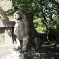 写真: 大雲院祇園閣 P9241267