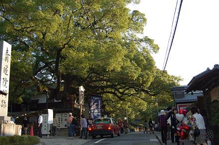 京都青蓮院