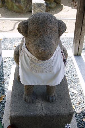 雪丸 聖徳太子の愛犬 達磨寺 2011年04月17日_DSC_0149
