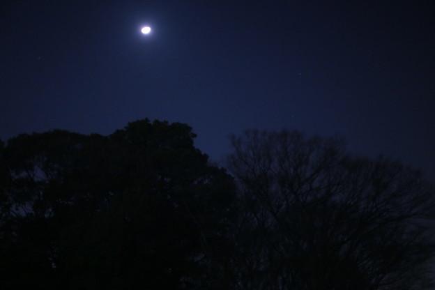 年明けの風景
