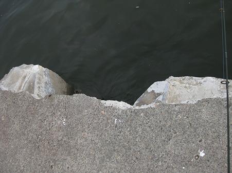 震災後の中防波堤