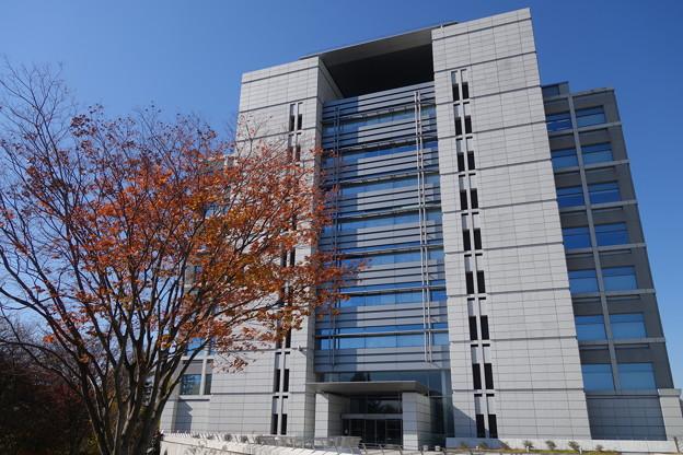 茨城県警察本部