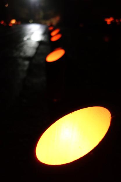 写真: 参道の竹灯篭