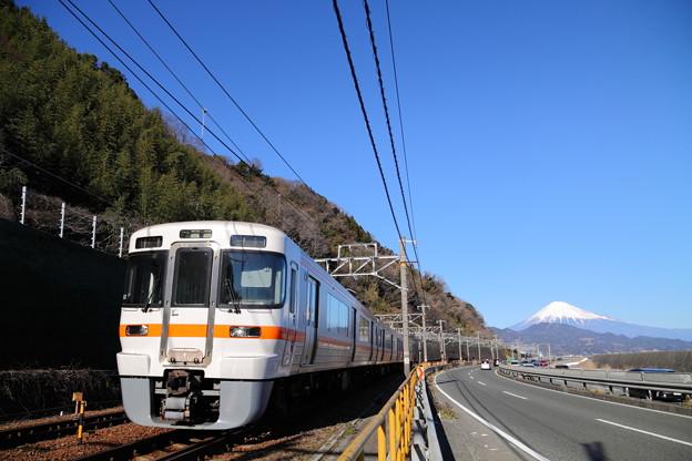 Photos: 東海道本線 313系普通列車