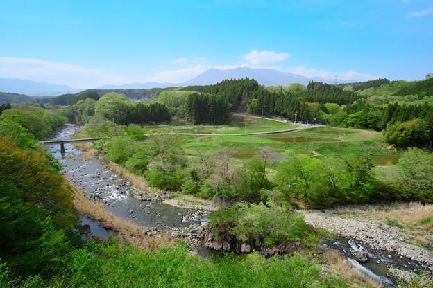 写真: 新緑の那須