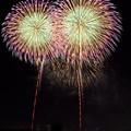 Photos: 夜空に大輪の花