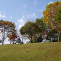 Photos: 秋の公園